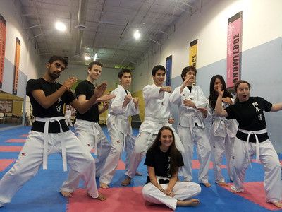 Martial Arts - Project Week 2014