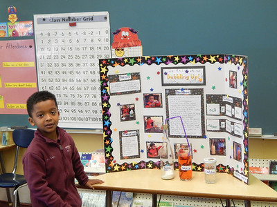 1st Grade - Science Fair